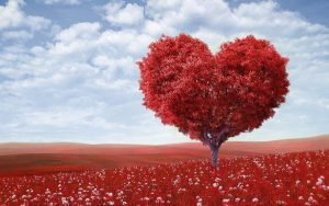 Love Values Love